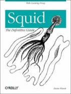 SQUID: THE DEFINITIVE GUIDE: MAKING THE MOST OF YOUR INTERNET CONNECTION
