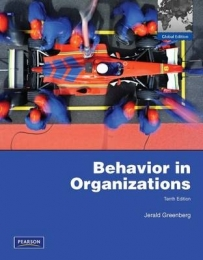 BEHAVIOR IN ORGANIZATIONS (IE)