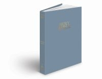 NIV BIBLE COMPACT VINYL STEEL BLUE